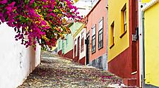 A narrow street with flowers and colorful buildings