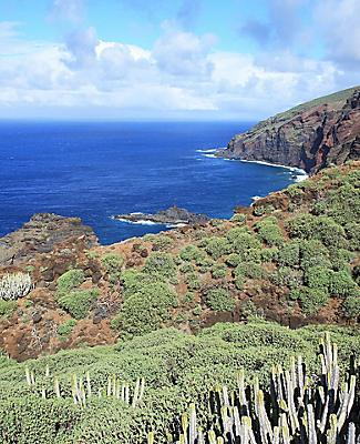 The volcanic coastal terrain in La Palma, Canary Islands