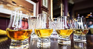 Four glasses of malt Scotch