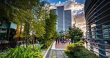 Garden and modern skyscraper in the city center of Manila, Philippines