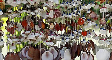 Hanging shell jewelry in a variety of color, for sale in Manzanillo, Mexico