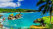 A beautiful vibrant beach with aqua blue water, rocks, and palm trees in Maui, Hawaii