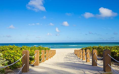 Miami Beach Sandy Beach Sun Ocean