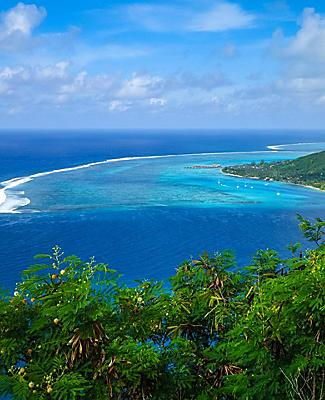 Aerial view of Opunohu Bay in Moorea Island, French Polynesia