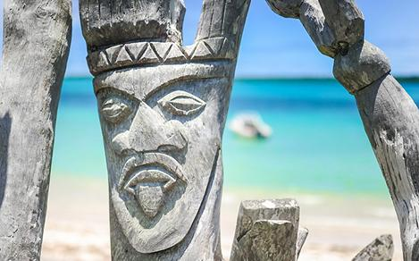 A face carved in a tree trunk on the beach of Mystery Island, Vanuatu
