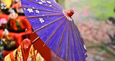 A kimono under a purple umbrella