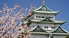 Close up of the Nagoya castle with flowers