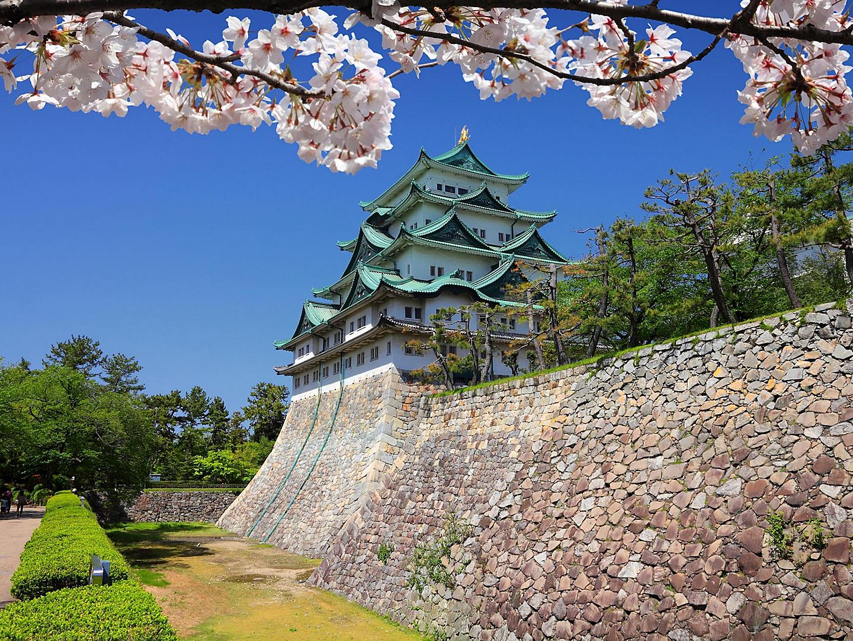 Nagoya, Japan Castle Flowers Wall