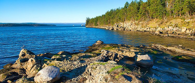 A rocky coastline bordered with lush vegetation in Nanaimo, British Columbia