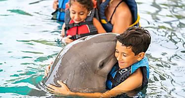 Bahamas Boy Swimming and Hugging Dolphins