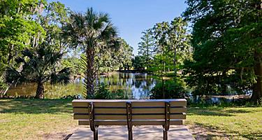 Bench by Turtle Swamp in New Orleans, Louisiana