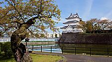 View of the Shibata Castle with trees in Niigata, Japan