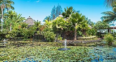 The lush landscape of the Paofai Gardens in Papeete, Tahiti