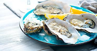 Plate of fresh Oysters in Picton, New Zealand