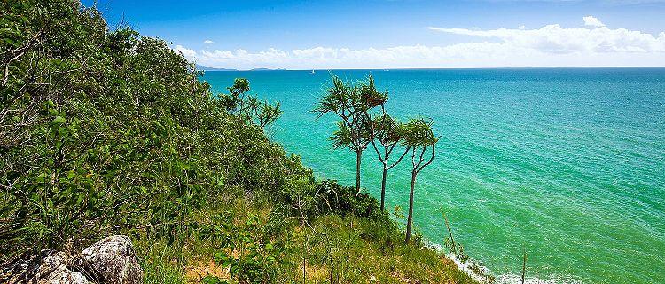 Beach and tropical vegetation in Port Douglas, Australia
