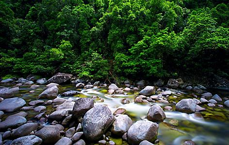 Mossman River flowing at Daintree Park in Port Douglas, Australia