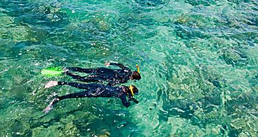 Snorkelers at the Great Barrier Reef by Port Douglas, Australia