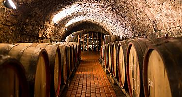 Old aged traditional wooden wine barrels in a vault, lined up in a cool and dark cellar in Porto, Portugal