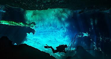Cenote Scouting