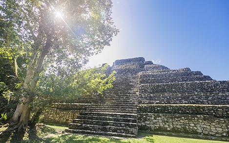 Chacchoben Mayan Ruins Low Wide, Costa Maya, Mexico