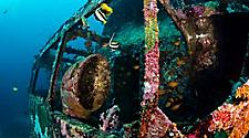 A sunken shipwreck underwater with colorful coral growing on it in Punta Cana, Dominican Republic