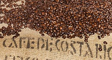 Bag of coffee beans from Puntarenas, Costa Rica