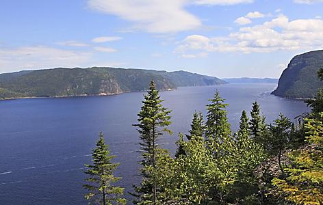 View of the Saguenay Fjord with trees, in Saguenay, Quebec