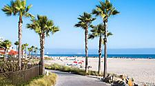 Beach and Palm Trees in San Diego, California