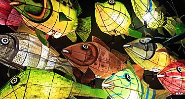 Paper fish lanterns hanging at a market