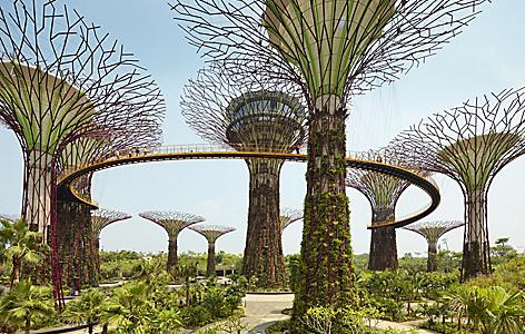 Sculptural vegetation towers from Gardend by the Bay in Singapore