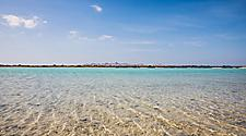 Beautiful clear water of the beach in Sir Bani Yas, United Arab Emirates