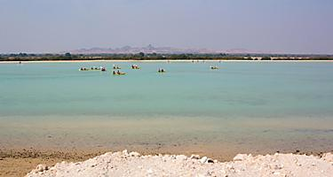 Sea landscape with canoes in the background on Sir Bani Yas, United Arab Emirates