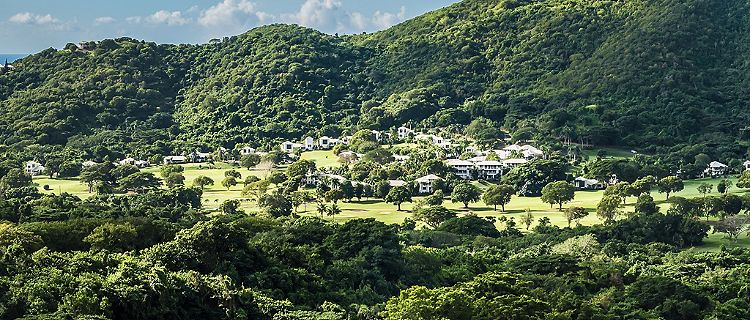 View of the lush natural landscape in St. Croix