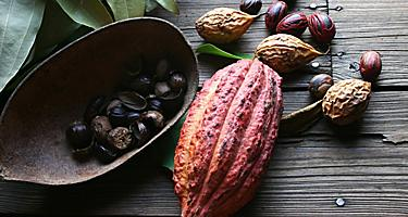 Nutmeg and fruit from farm in St. George's, Grenada