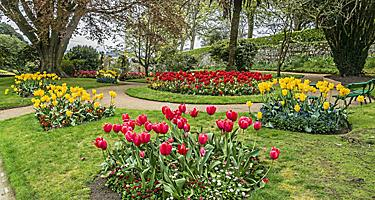 The Victorian Candie Gardens flowers in Saint Peter Port, Channel Islands