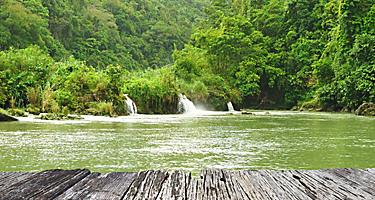 Tropical river running through rainforest in Subic Bay, Philippines