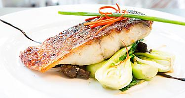 A grilled barramundi steak on a white plate
