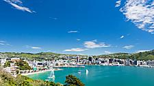 View of the Bay of Wellington from Mount Victoria in New Zealand