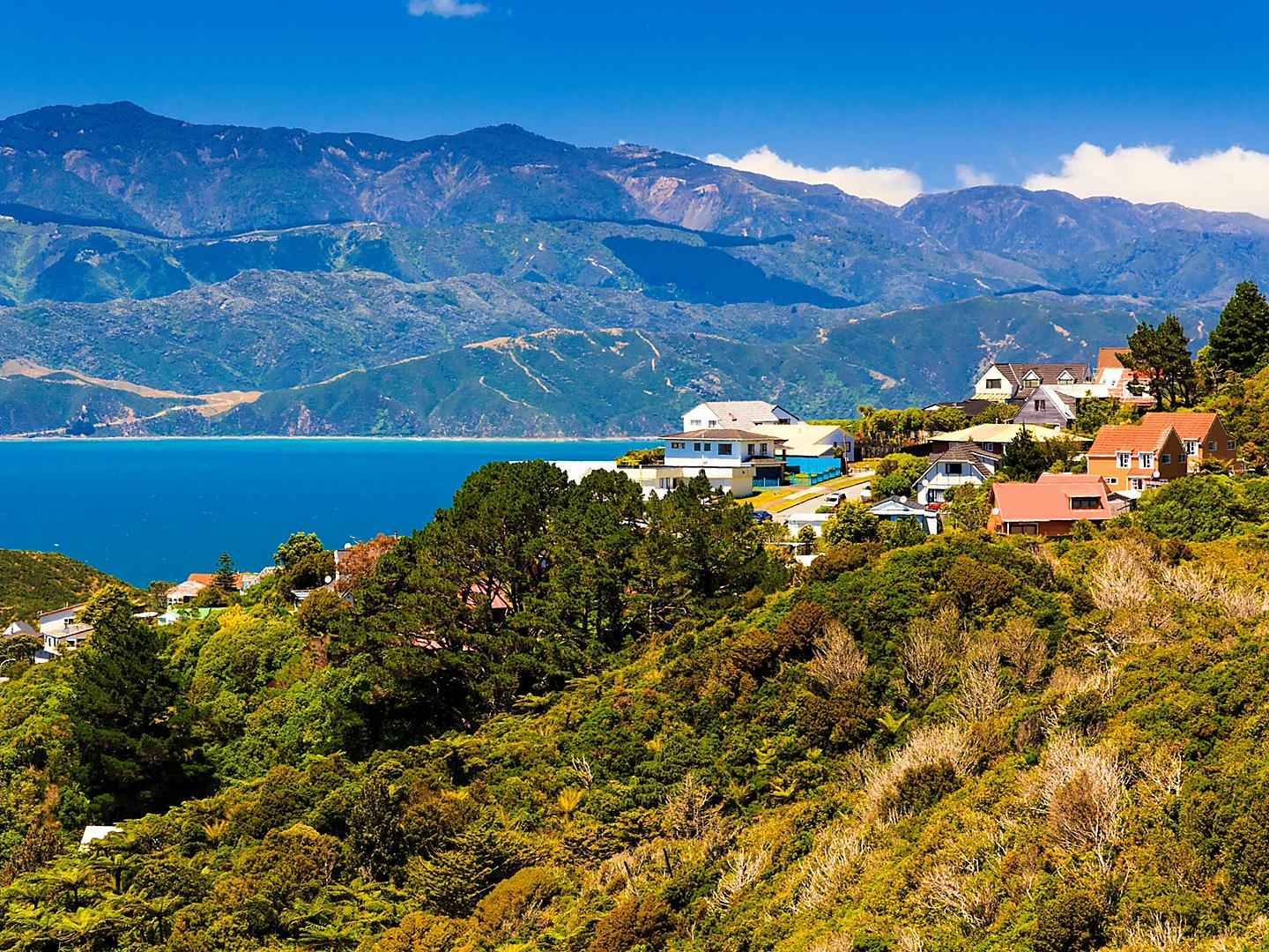 Wellington, New Zealand, Hillside homes