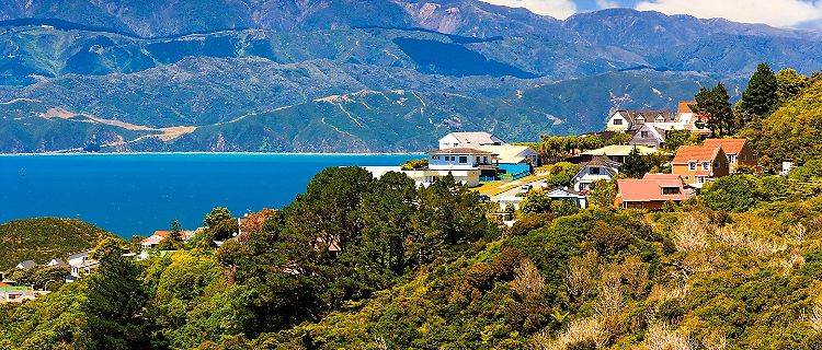 Hillside homes in Wellington, New Zealand