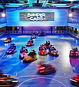 Bumper Cars at the Sea Plex