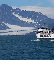 Kenai Fjords National Park Cruise Tours