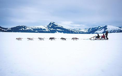 People on Dog Sled in Mendenhall Glacier