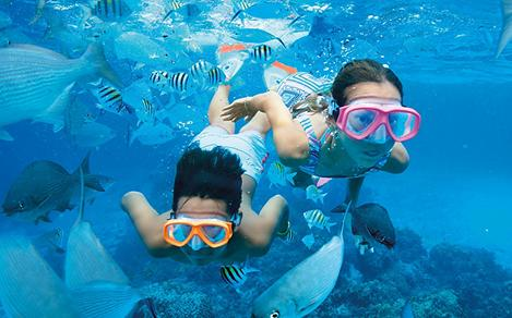 Kids Snorkeling with Fish Blue Water