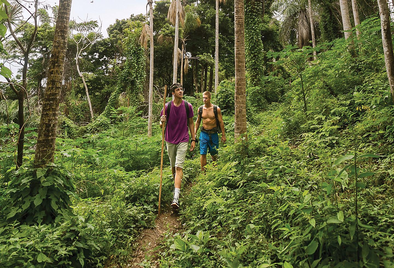 Roatan Honduras Rainforest Trail Hike