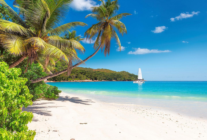 Jamaica Falmouth Beach Sail Boat Blue Ocean