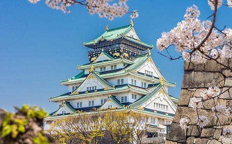 Close-Up of Osaka Castle Behind a Rock Wall