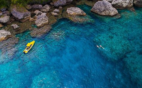 Aerial of Divers Snorkeling by the Coast of Lelepa