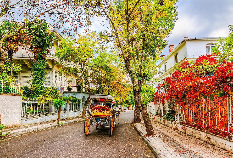 Turkey Buyukada Victorian Street Historic Island