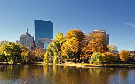 Boston Commons Fall Daytime Foliage